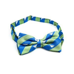 Green and blue stripe bow tie