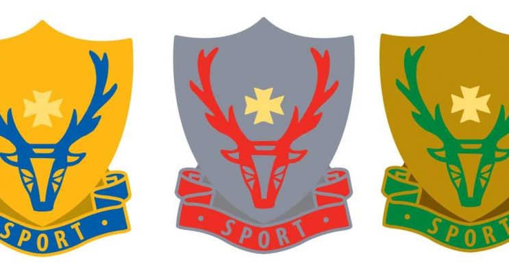 Haydon School Award Badges, school badges, award badges