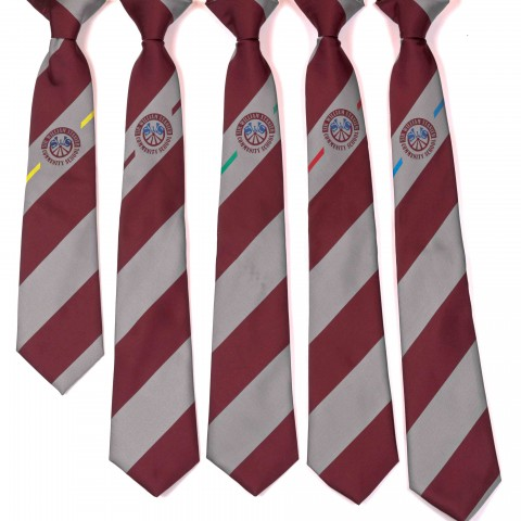 Custom made School Ties - 8251