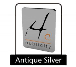 Antique silver pin